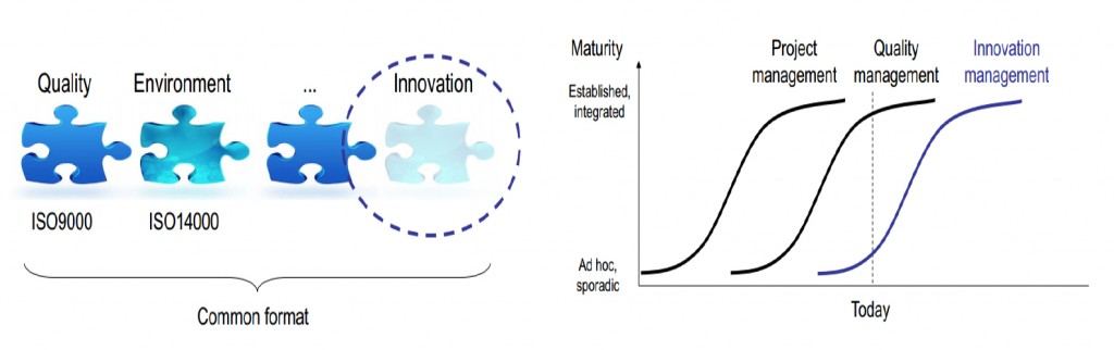 Development of Innovation Standards