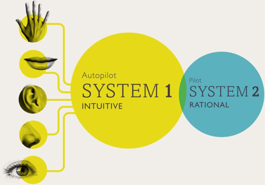 system1-and-system-2